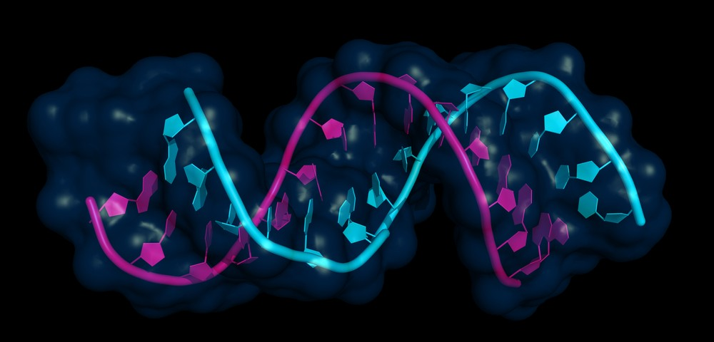 Sézary Syndrome Patients' Genome IDs Mutations that Might Lead to Treatments