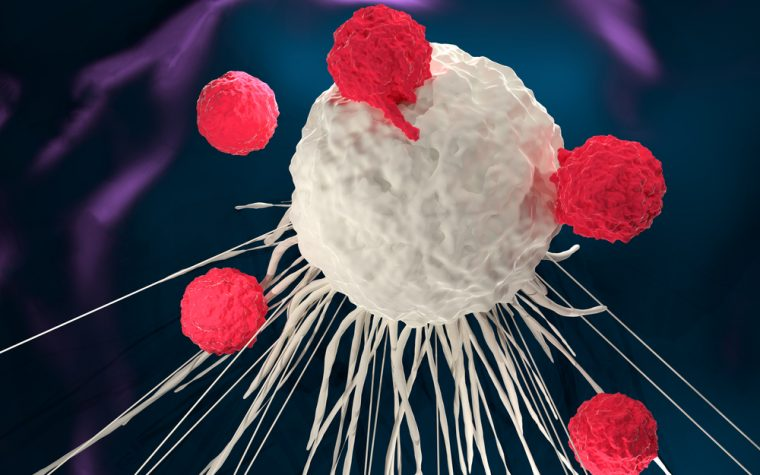 AUTO3, a novel CAR T-cell therapy