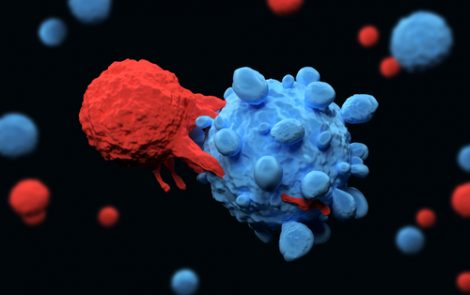 Eureka Technologies Receives FDA's OK to Move T-cell Therapy into Clinical Trials